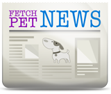 Fetch Pet News